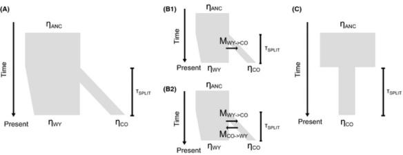 Excerpt of Figure 2 from McCoy et al., illustrating the demographic models tested using δαδι.